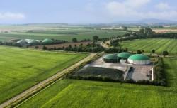 Firmenadressen Biomasse